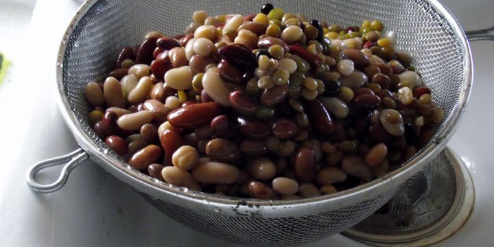 Beans in a strainer after soaking.
