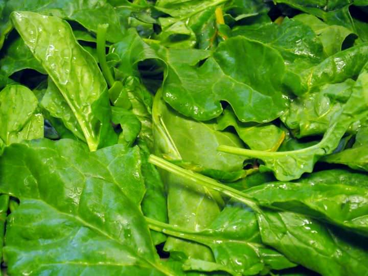 Washed beet greens and spinach.