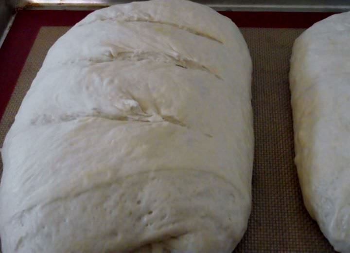 Sourdough loaves proofed and ready to bake.
