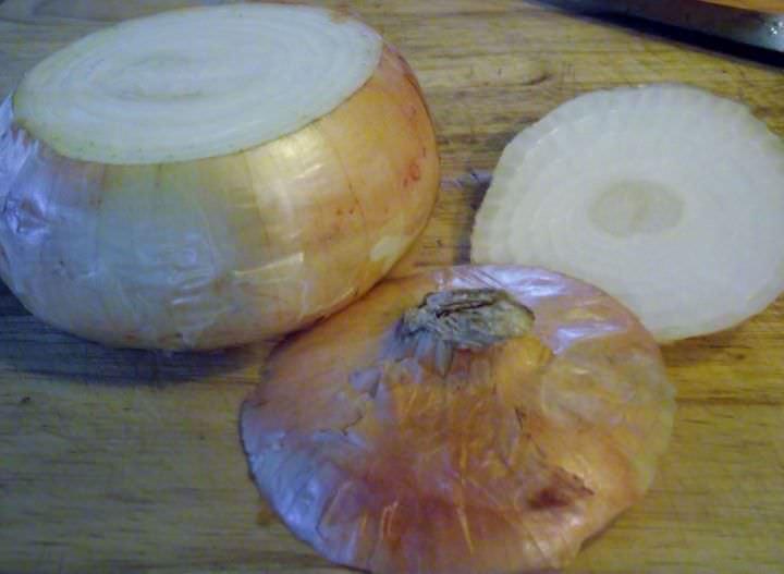 Cutting an onion, properly.