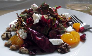Winter Salad with goat cheese, mandarins and purple spinach.